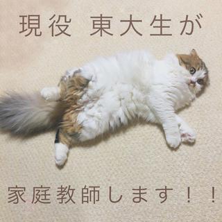 【期間限定】東大生が家庭教師します!!
