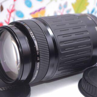 キヤノン望遠レンズ EF75-300mm Canon イベントに...