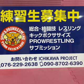 プロレス 格闘技