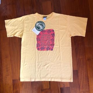 新品【GRAMICCI】Tシャツ