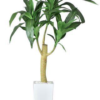 🌈Sフェイクグリーン【ドラセナL/グリーン色】 観葉植物 …
