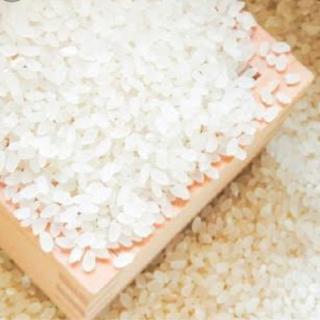 コシヒカリ 玄米 30kg  令和2年収穫 冷蔵保管