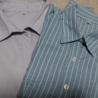 シャツ 2枚組 Mサイズ レディース