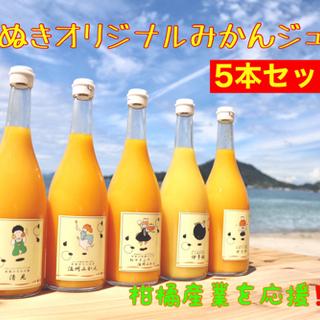 【ネット決済・配送可】オリジナルみかんジュース3.5.10本セット🍊