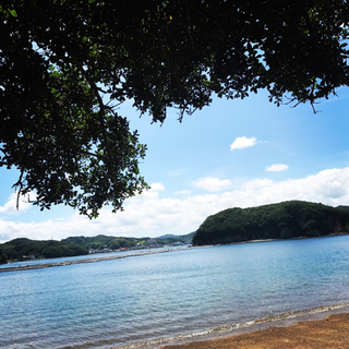 ◆期間限定◆🏖クルージングや無人島など夏の思い出作りに⛴