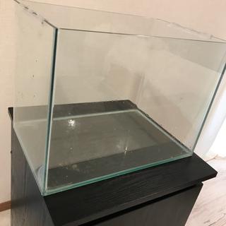 【ネット決済】ガラス水槽