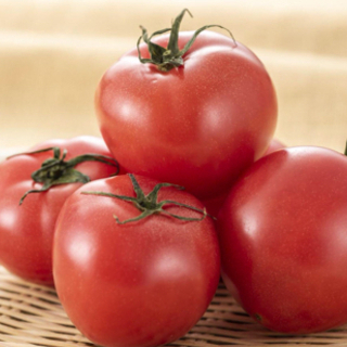 【早い者勝ち】トマト お譲りします。の画像