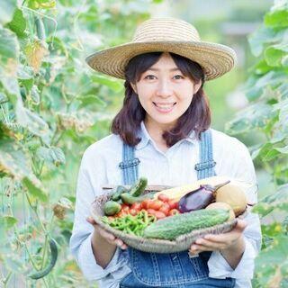 農産物ネット販売のご提案!熊本の農家さん向け