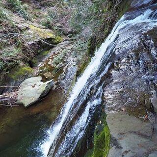 ライ麦の種まきと開墾場の滝見学 - 君津市
