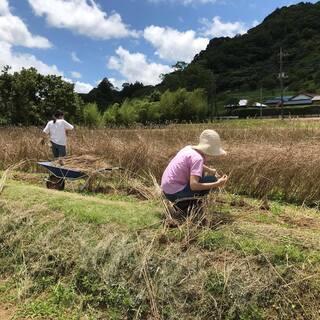 ライ麦の種まきと開墾場の滝見学 - イベント