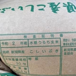 【ネット決済・配送可】令和2年度産こしいぶき数量限定10%引き!!