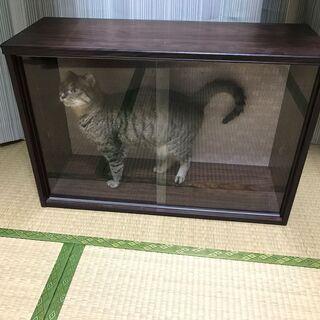 猫ケース 自作 30x51x76cm