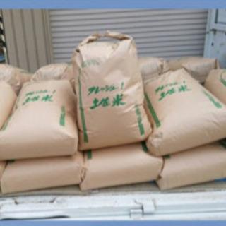 9月24日収穫🌾高知県コシヒカリ🤩🉐お届け無料🉐消費税無し