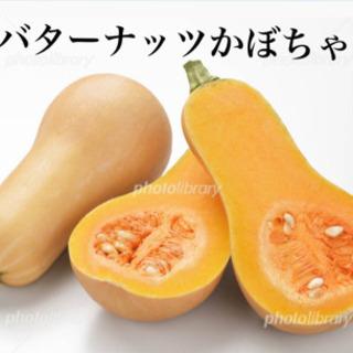お野菜11種類!(4)オマケ付き👍