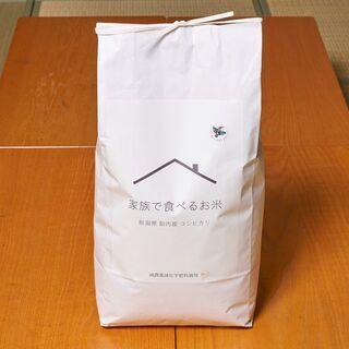 収穫したて!!令和3年度米コシヒカリ玄米10kg