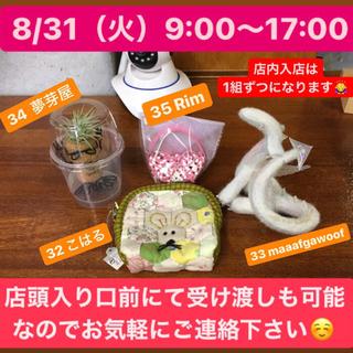 8/31(火)9:00〜17:00