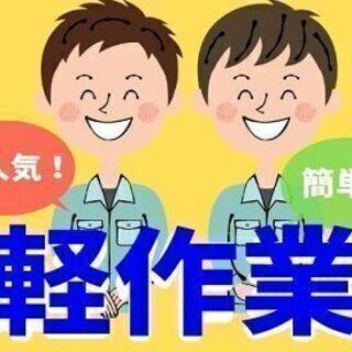 【急募】段ボール製品の検査作業(汚れが無いかどうかチェック) 時...