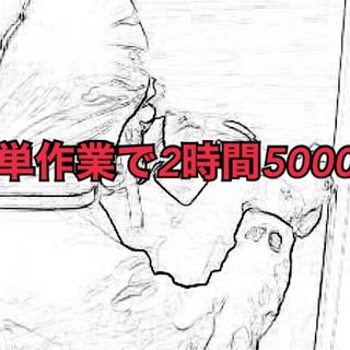 軽作業2時間程度5000円(1現場)除菌クリーニングスタッフ