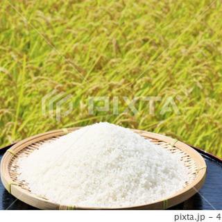 減農薬栽培コシヒカリ玄米30キロ
