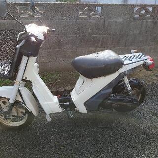 スズキ スーパーモレ 50cc (お引き取り日程きまりました)