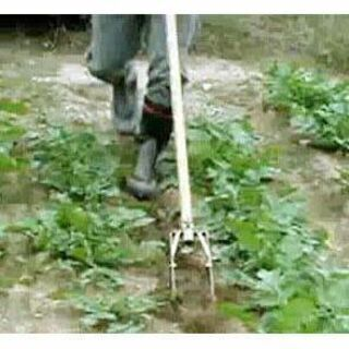農業 向井工業 中耕除草機 たがやす 多少の値下げ可能