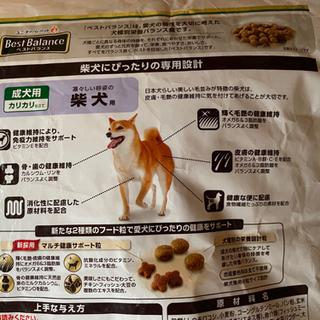 ベストバランス柴犬用 5.5キロ − 新潟県