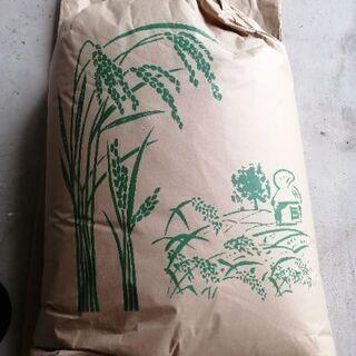 令和三年産徳島県産コシヒカリ 等外米30㌔玄米