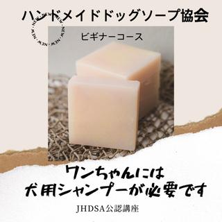 【満席になりました】JHDSA公認ワンちゃんの為の手作り石鹸