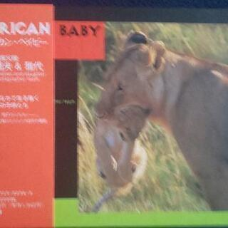 写真集 アフリカンベイビー(動物の子供たち)