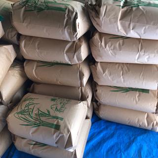令和3年 三重県産コシヒカリ 玄米 30kg 農家直売