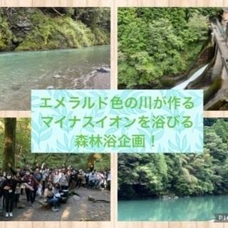 鳩ノ巣渓谷へエメラルド色の川が作るマイナスイオン付きの森林浴散策...