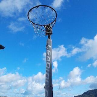 『値下げ再出品』 バスケットゴール