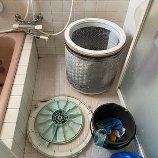 あなたの洗濯機汚れてますよ😱 - 半田市