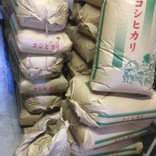 コシヒカリ米屋のお米30キロ新米