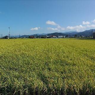 令和2年度福井県産コシヒカリ玄米30kg(完売)
