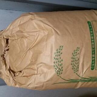 ①玄米15㎏ひとめぼれ令和2年度産