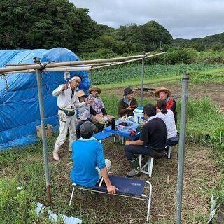 稲刈り~自然農の米作り~ - イベント