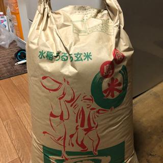 【ネット決済】あきさかり【令和2年度】30キロ5000円