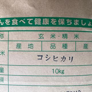 コシヒカリ 10kg 新米