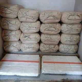 処分大特価!昨年の古米(玄米)30キロ ひとめぼれ。早い者勝ち