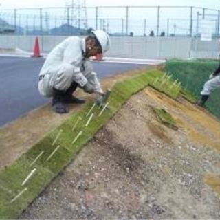 🟡北秋田市🟡野芝張り