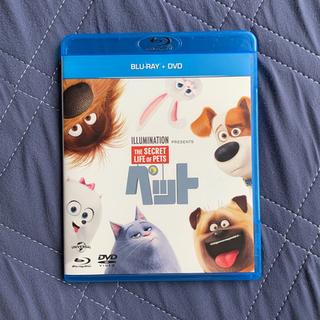 ペット Blu-ray+DVDセット('16米)〈2枚組〉美品
