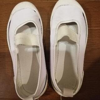 上靴 20cm