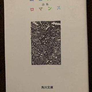 【ネット決済】銀色夏生