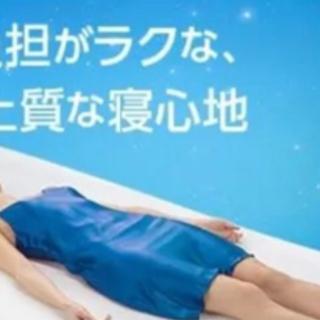 【美品】トゥルースリーパー ダブル