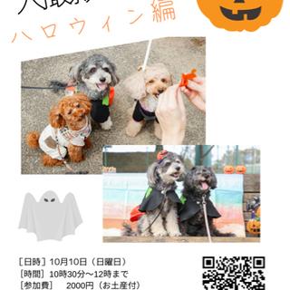 犬イベント!ハロウィン!撮影