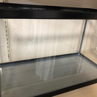 【ネット決済】60センチ水槽セット