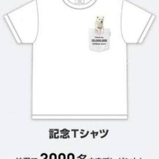 当選 Softbank ソフトバンク♪お父さん犬 カイくん…