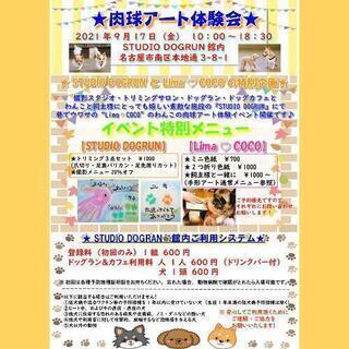 9月17日(金)わんこの肉球アート体験会