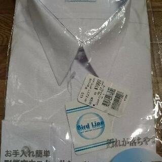 値下げ165cm スクールシャツ 新品未開封
